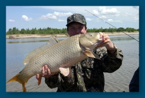 какая рыба ловится зимой в незамерзающих водоемах